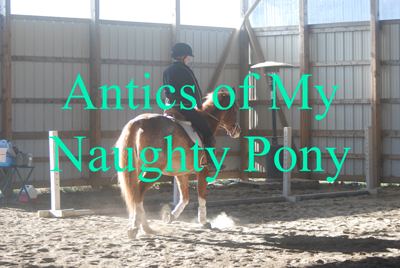 Antics of My Naughty Pony
