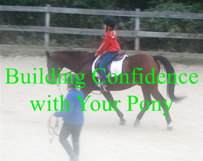 Building Confidence with Your Pony