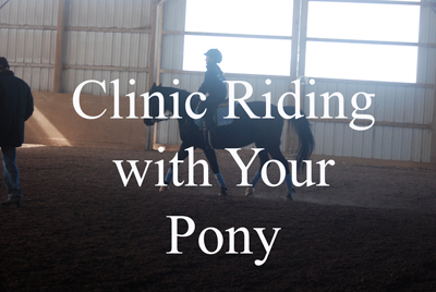 Clinic Riding with Your Pony