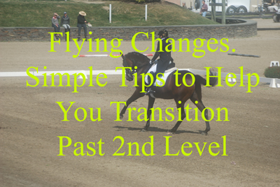 Flying Changes. Simple Tips to Help You Transition Past 2nd Level