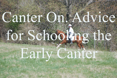 Canter On. Advice for Schooling the Early Canter