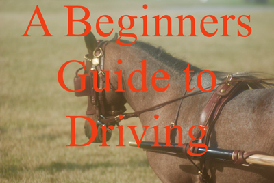 A Beginners Guide to Driving