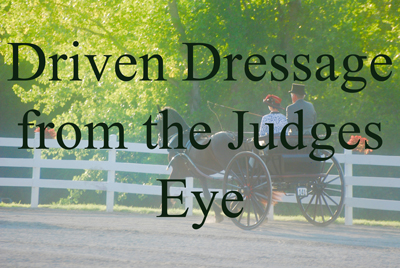 Driven Dressage from the Judges Eye