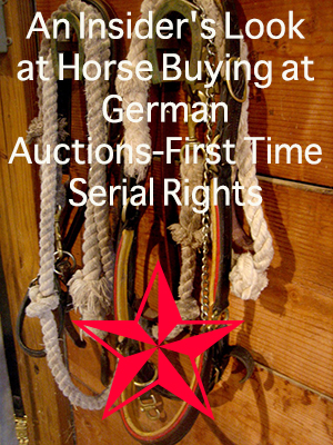 An Insider's Look at Horse Buying at German Auctions-First Time Serial Rights